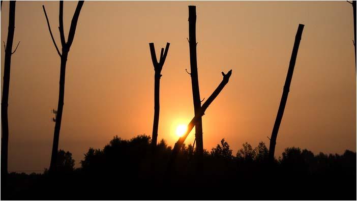 [原]沈阳·市郊的一个下午 - Tarzan - 走过大地