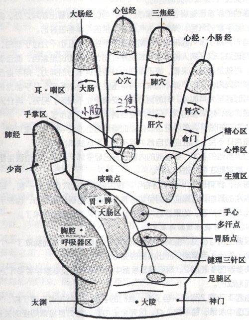 手部经脉穴位以及对应内脏疾病按摩 - zhang13181415 - zhang13181415的博客
