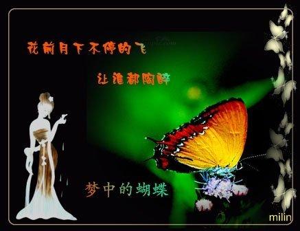 梦中的蝴蝶 - 江洋 - jiangxd601 的博客