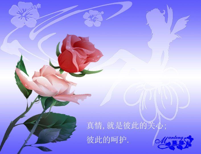 为博友诗文评论集锦《2》(图文) - 枫叶 - 枫叶的博客