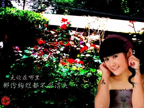 PS姐姐 - 饺子 - ......秘密花园......
