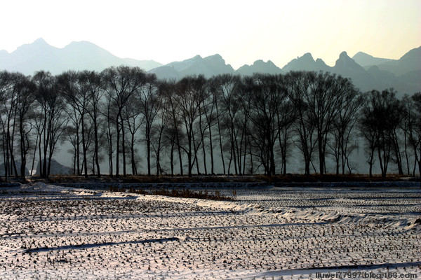 围场的冬日(原创) - 刘炜大老虎 - liuwei77997的博客
