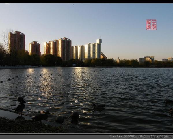 莲花池暮色(原摄) - 五味杂陈 - 我的人生驿站