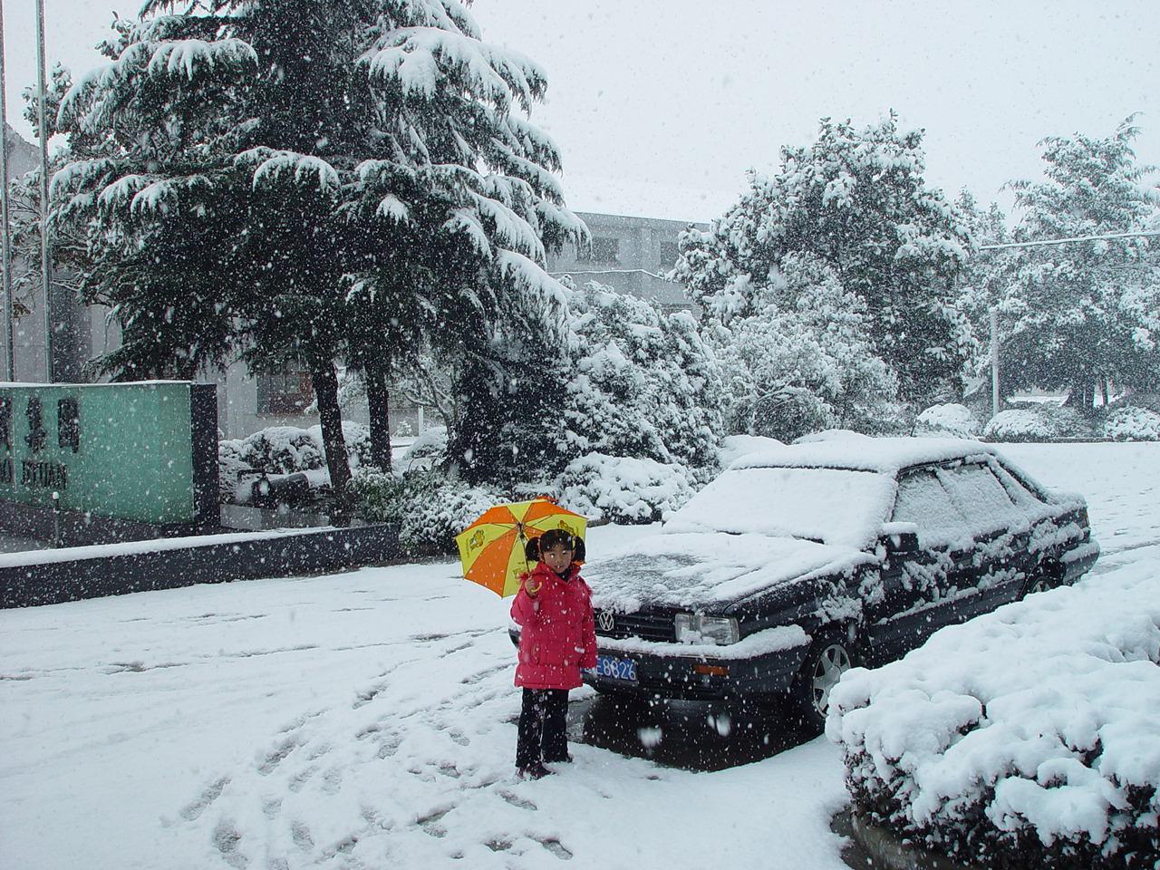 下雪啦【原】 - 金戈铁马 - 金戈铁马的博客