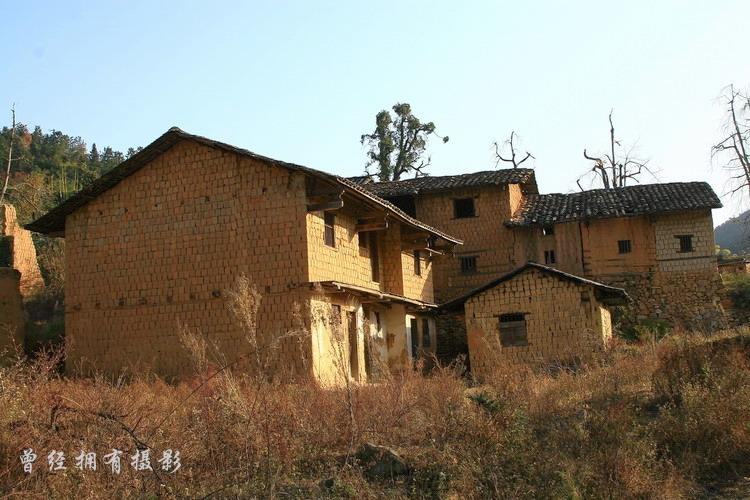 (原创摄影)粤北赏银杏----山村沧桑 - 曾经拥有 - 我的摄影花园