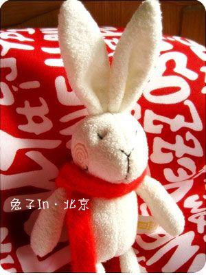 兔子兄安全抵达北京w - ёошул - 牢騷小分隊
