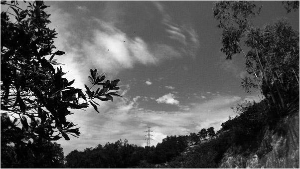 [原] 深圳·南山·周日 - Tarzan - 走过大地