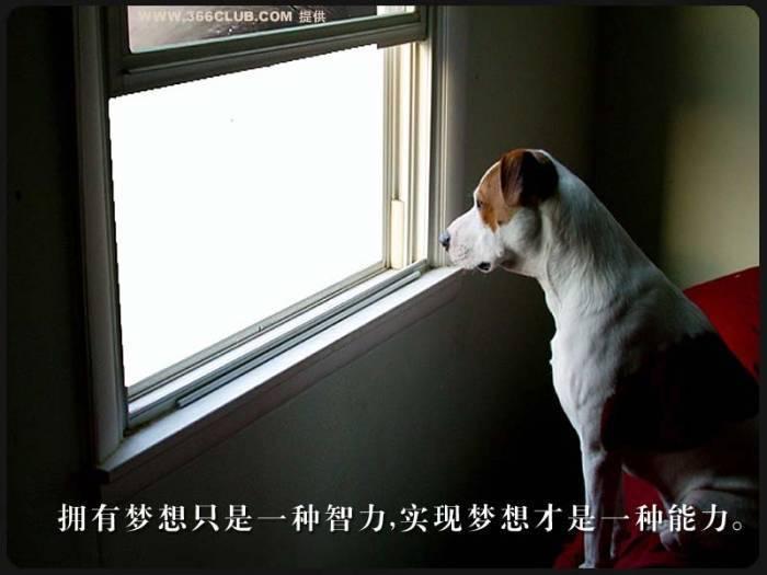 做人百图 - lidongliang1963.h - 敲开上帝之门的博客