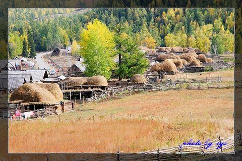 梦幻西域21西北第一村白哈巴 - 自由诗 - 人文历史自然 诗词曲赋杂谈