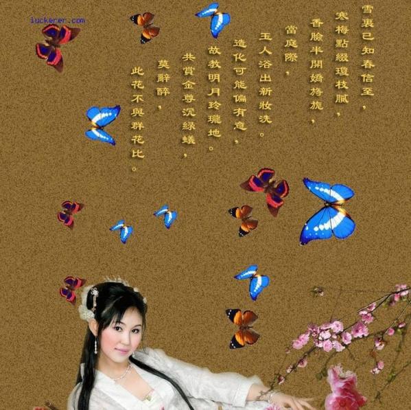 2008年11月21日 - 乘成 - 乘成休闲吧