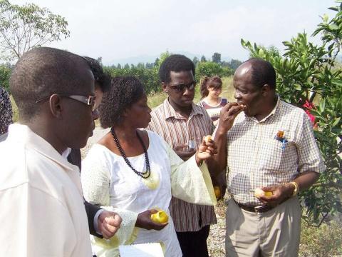 乌干达总统事务部部长一行考察我市农业 - 清扬 - 花果飘香