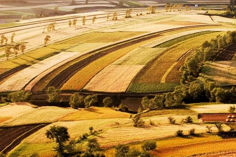 秋色-张北小石沟村 - 菜鸟 - 菜鸟的摄影空间
