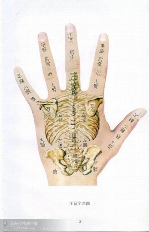 [转] 手诊、面诊----人体全息图    - juxie-2009 - juxie-2009的博客