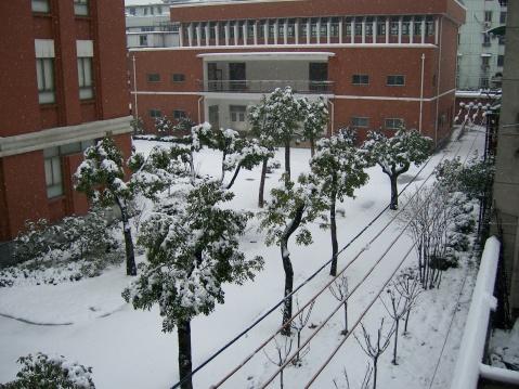 雪天思絮(一) - 天然 - 天然的博客