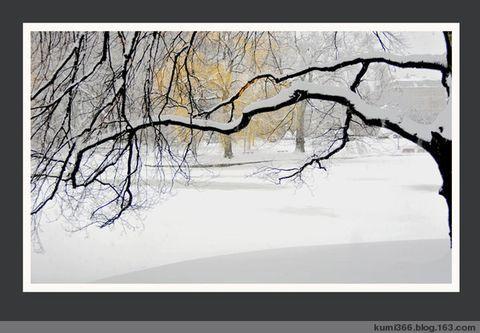 下雪了 - kumi366 - kumi366的博客