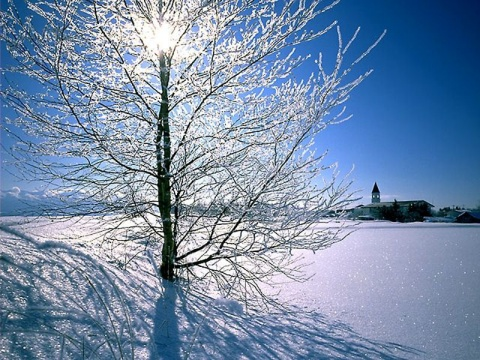 雪花般的 (原创) - 梦景红花 - 梦景红花的博客