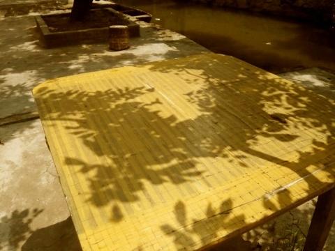 小洲 - 明明 - 梁明明的blog—光影之河