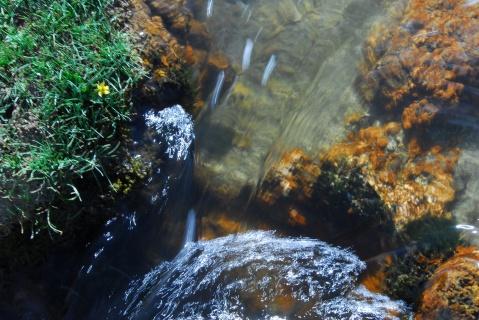 三江源生命之水 - 卓巴 - 尕多觉卧的寻梦缘