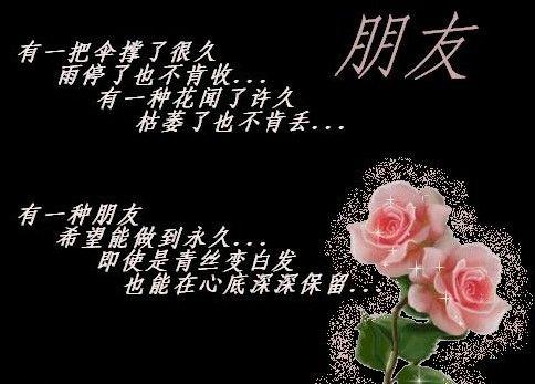 引用 相遇+相知+相契+相伴+相助+相思+相辉=朋友 - 红太狼 - 写意青春