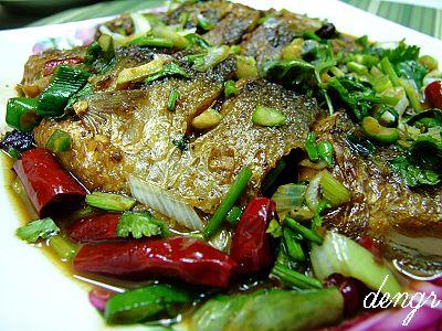 家常做淡水鱼好吃不腥的的窍门---红烧鲫鱼 - 可可西里 - 可可西里