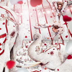 荷兰摄影家Erwin Olaf作品系列 - 五线空间 - 五线空间陶瓷家饰