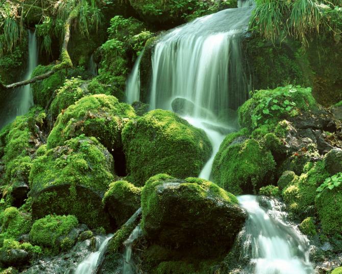 享受大自然的美丽 - 黑玫瑰兰妮 - 黑玫瑰兰妮的博客