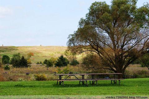 Bronte Creek Provincial Park半日游 - shirley.7202002 - shirley.7202002的博客