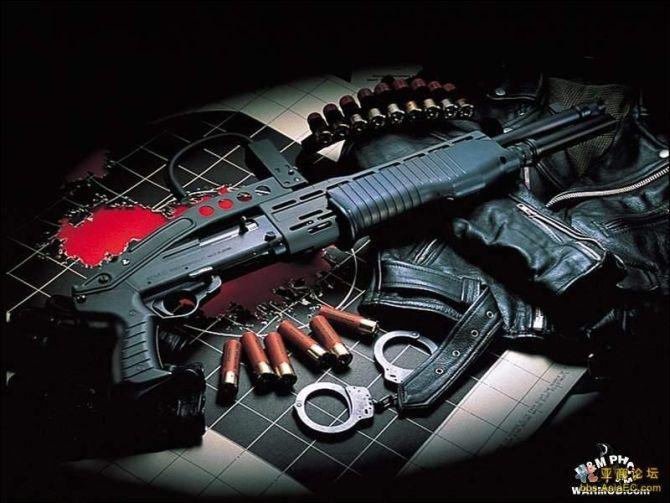 世界名枪 - 侠士 - 冷傲侠士