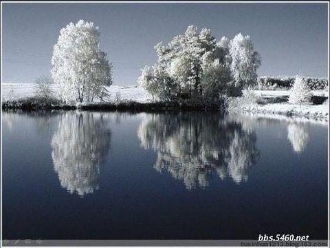 【原创】暴雪中的静泊 - 夫一 - 夫一1213@的博客