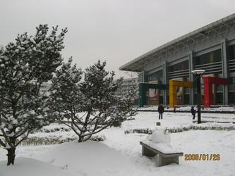 [原创]    南京的雪
