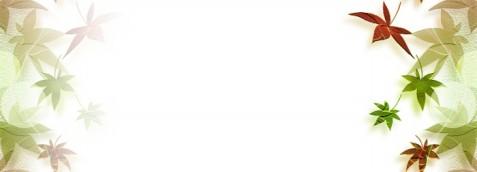 【转载】网易博客代码(日志背景II) - 【王雪的博客】 - 王雪的博客