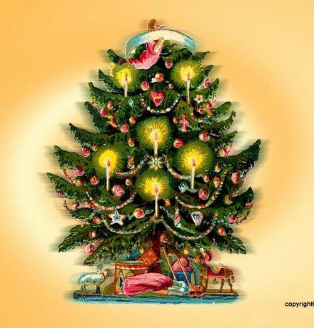 我的生活物语 之 圣诞 - 刘放 - 刘放的惊鸿一瞥