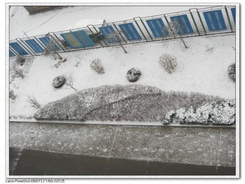 冬至雪纷飞 - 寒江钓雪 - 寒江钓雪孤舟行