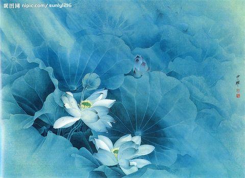 一行禅师语录(二)  - 芬陀利花·心安 - 净 心 斋