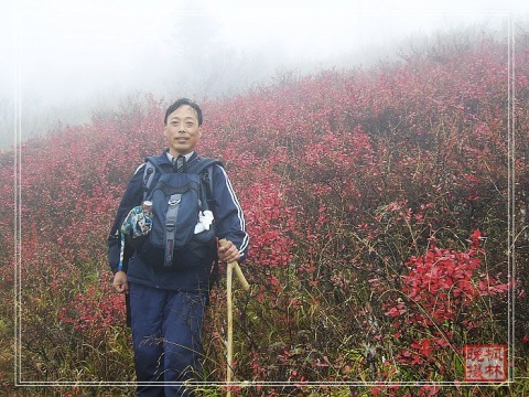[原创]秋雨光头山 - 枫林晚 - 六然居