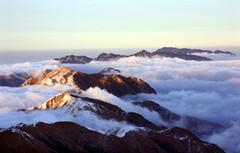 咏兰 - 雾山上来客 - 雾山上来客博客