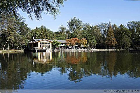 秋日上海共青森林公园 - 16772677.dcg - 16772677.dcg的博客