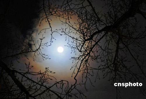 组图:北京出现月晕奇观