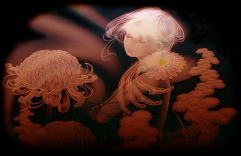 黑色背景图片2 - 蓝天 - 宁静的夜