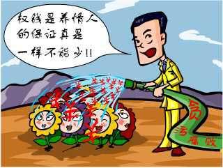 中国代表就是酷 - Cooky - ......惜