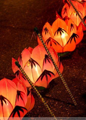 迎中秋 -- 大坑夜龍 - 酷愛編織的猫 - 猫公館