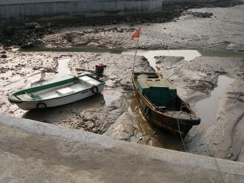 七分钟不到的路   便看到虾峙小学的围墙   那是孩子的渔民画   装饰性很强   犹如浓浓的鱼腥味   山不算山 因为不高   路其实也就是海塘   只是比海塘更宽   是退潮的时候   船儿陷在滩涂里   纹丝不动