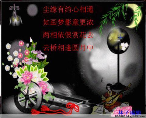 蝶舞 - 林子 - 林子的博客 温馨的港湾