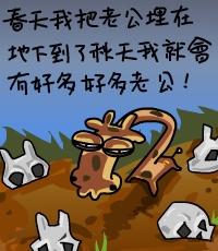 转载:笑喷了!!超搞野嘅长颈鹿!!!  - 此情此景 - 此情此景