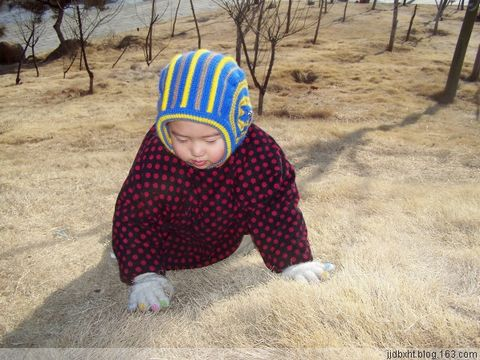 宝宝在元旦(补记) - 海的微笑 - 海的微笑