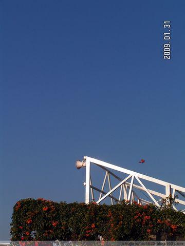 印象2009 之 闲逛白鹭洲 - 易江南 - 纪念,为了遗忘
