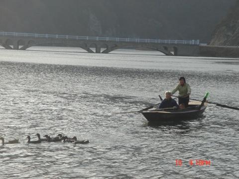[原创91]河口沿江徒步 - 飞舟 - 飞舟