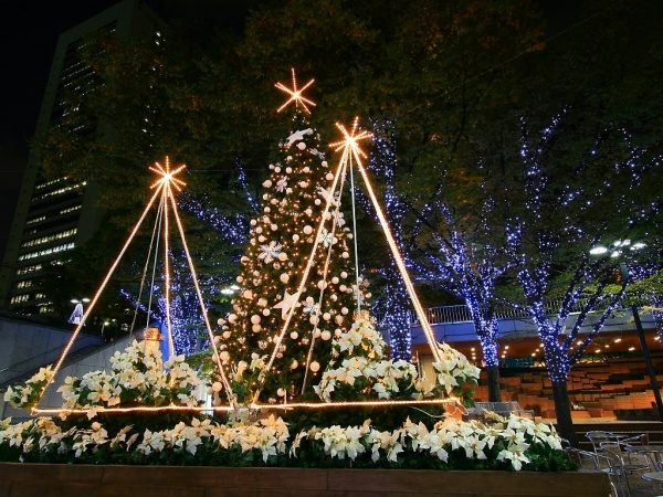 引用 圣诞夜景美图欣赏 - 海的女儿  - 海的女儿的博客