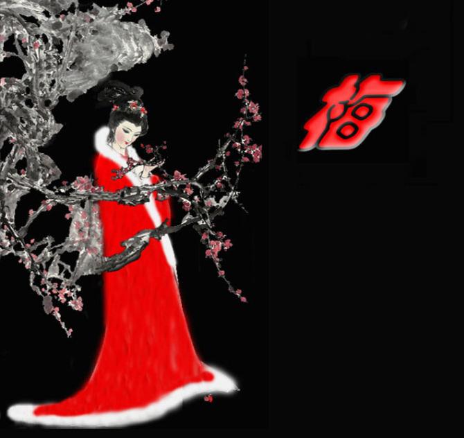 雪花爱上梅花 - 云水风度 - liujianping72 的博客