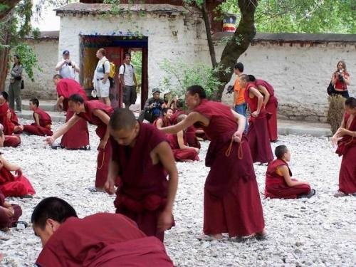 别样风情游西藏:20色拉寺辩经上 - 建龙 - 莫问回程